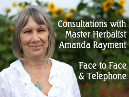 Consultations with Master Herbalist Amanda Rayment