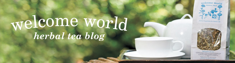Welcome World Blog